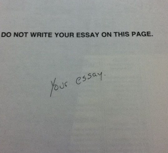 Write My Essay For Money